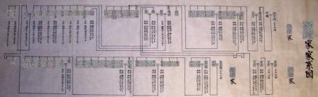 三系統家系図