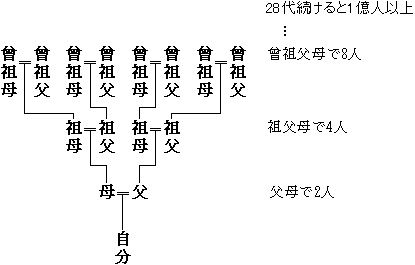 複数の系統